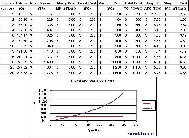 Variable Cost Fixed Cost Economics